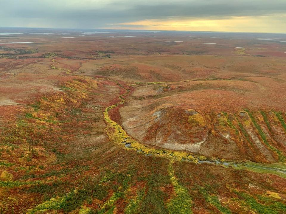 """<span class=""""caption"""">Arctic peatland in the Mackenzie Valley. A quarter of all global peatland carbon is found in Canada.</span> <span class=""""attribution""""><span class=""""source"""">(Ed Struzik)</span>, <span class=""""license"""">Author provided</span></span>"""