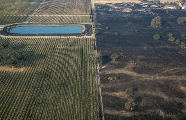 <p>A lush vineyard, left, is seen next to a scorched wasteland near Vintners Inn, just north of Coffey Park, Sonoma County near Santa Rosa, Calif., on Oct. 11, 2017. (Photo: George Rose/Georgerose.com via AP) </p>