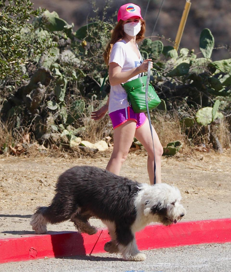 <p>Isla Fisher spends her afternoon hiking with her dog in L.A. on Friday. </p>