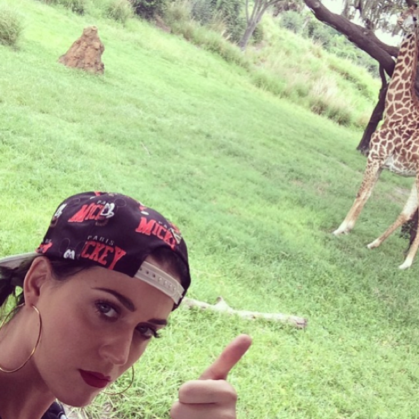 Katy Perry shares Instagram pic of trip to Florida zoo