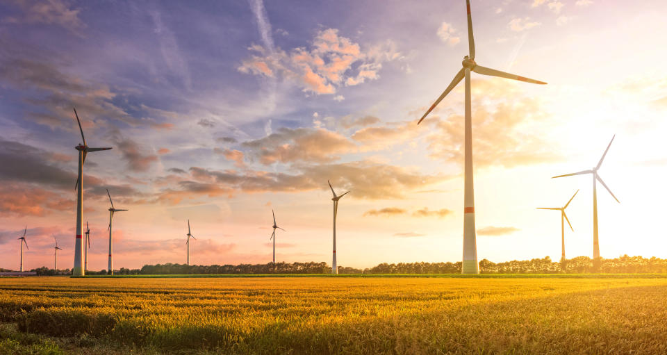 Most firms didn't know the definition of commonly used green investing terms
