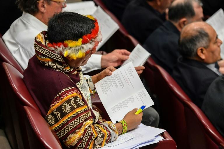 A representative of one of the Amazon rainforest's ethnic groups reads a document (AFP Photo/Andreas SOLARO)