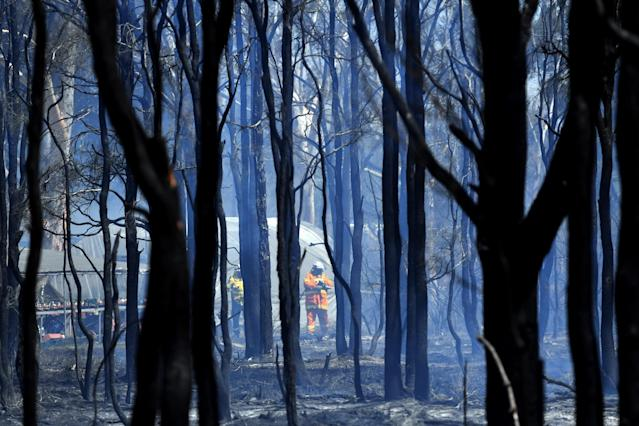SYDNEY, AUSTRALIA - NOVEMBER 12: NSW Rural Fire Service firefighters mop up after a bushfire in the suburb of Llandilo on November 12, 2019 in Sydney, Australia. More than 50 fires are burning across NSW with 200 homes and sheds destroyed and three people confirmed dead. Catastrophic fire danger - the highest possible level of bushfire danger - has been forecast for the greater Sydney, Illawarra and Hunter areas which includes the Blue Mountains and the Central Coast. NSW Premier Gladys Berejiklian declared a state of emergency on Monday, giving emergency powers to Rural Fire Service Commissioner Shane Fitzsimmons and prohibiting fires across the state while almost 600 schools have also been closed as a safety precaution. (Photo by Sam Mooy/Getty Images)