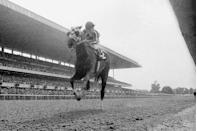 <p>Secretariat wins the Belmont Stakes in record time, becoming the first horse to win the Triple Crown since 1948.</p>