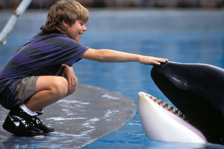 <p> Family movies were a very different beast back in the &#x2019;90s, and Free Willy is the poster boy for a whole sub-genre of treacly heart-warmers. It&#x2019;s kinda like ET &#x2013; albeit without the Spielberg magic &#x2013; with a killer whale subbing in for the alien as a lonely kid forms an unlikely friendship with an orca in an amusement park. While the park&#x2019;s owner plots to cash in on Willy, the lad plots to free him (see, it&#x2019;s not just a clever title), and everybody feels better at the end. Certainly not one for the cynical, but kids will undoubtedly warm to an aquatic star who is definitely&#xA0;<em>not</em>&#xA0;a fish.&#xA0; </p> <p> <strong>Age range:&#xA0;</strong>8 &#x2013; 13 </p>
