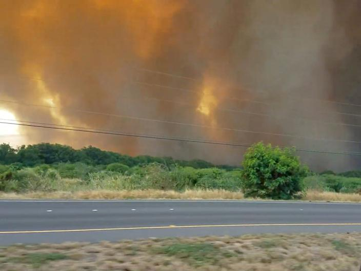 wildfire in maui