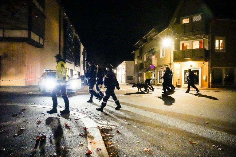 It was the deadliest attack in the Scandinavian country since far-right extremist Anders Behring Breivik killed 77 people in 2011 (AFP/Håkon Mosvold Larsen)