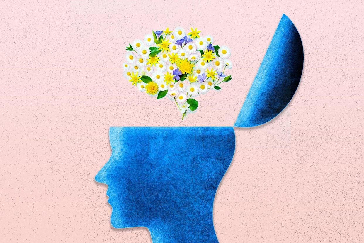 An illustration of a human head with a hatch open showing a brain made of flowers