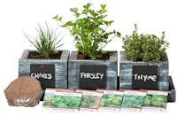 <p>People with a green thumb will appreciate this <span>Herb Garden Planter</span> ($49).</p>