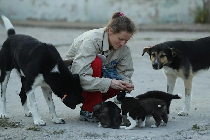 <p>Marie-Louise Chenery, who is from San Diego,and is a volunteer with the Dogs of Chernobyl initiative, tends to stray puppies near the Chernobyl nuclear power plant on Aug. 17, 2017, near Chernobyl, Ukraine. (Photo: Sean Gallup/Getty Images) </p>