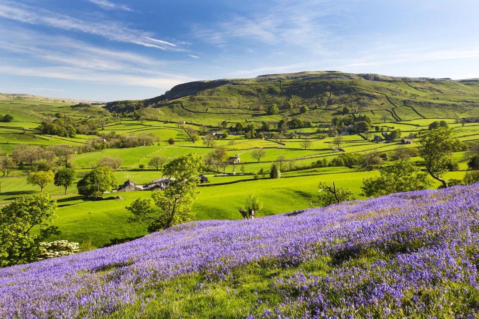 Explore the Yorkshire Dales National Park on the Settle Circular trail (Getty Images)