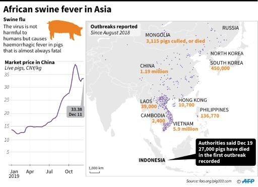 Map showing parts of Asia, where African swine fever has led to millions of pigs dying or being culled since August 2018
