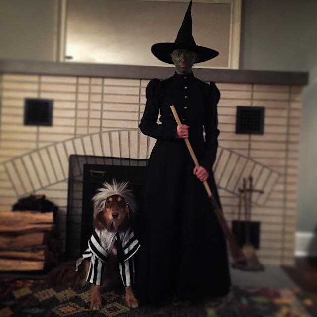 "<p>Amanda Seyfried, who dressed as the Wicked Witch of the West, outfitted her beloved canine companion, Finn, in <a href=""https://www.instagram.com/p/9hYrb3SdrJ/"" rel=""nofollow noopener"" target=""_blank"" data-ylk=""slk:a Beetlejuice look"" class=""link rapid-noclick-resp"">a Beetlejuice look</a> for the holiday in 2015. (Photo: Instagram/Amanda Seyfried) </p>"
