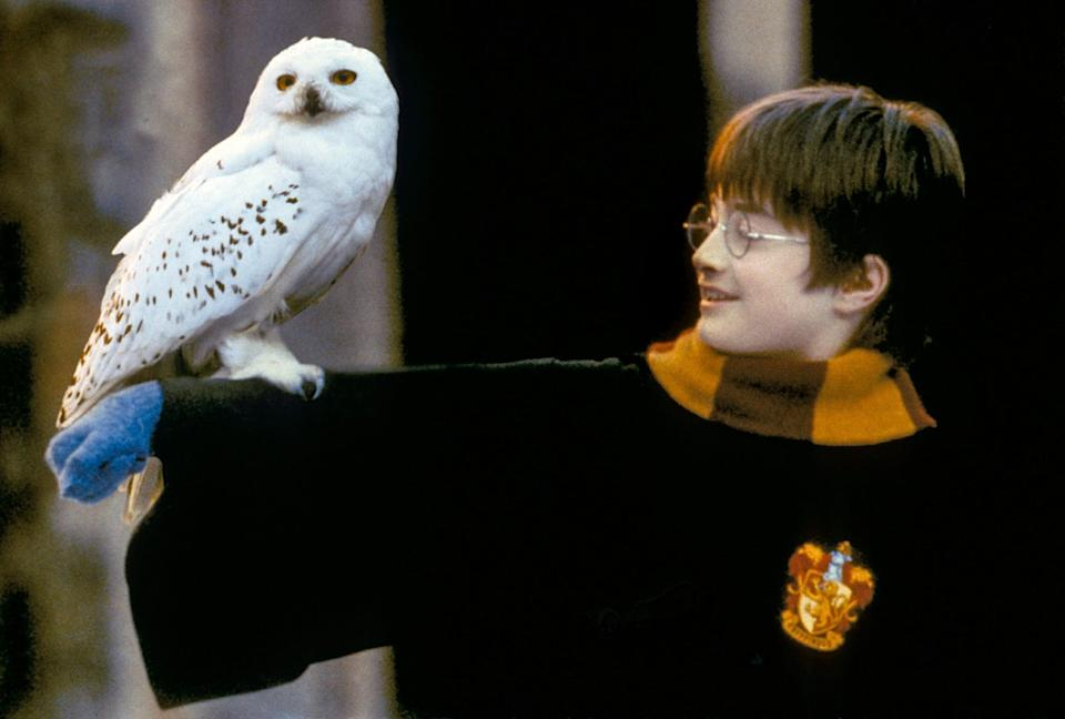 """<p><strong>HBO Max's Description:</strong> """"Harry Potter learns on his eleventh birthday that he is the orphaned son of two powerful wizards and possesses unique magical powers of his own. He is summoned from his life as an unwanted child to become a student at Hogwarts, an English boarding school for wizards. There, he meets several friends who become his closest allies and help him discover the truth about his parents' mysterious deaths.""""</p> <p><a href=""""https://play.hbomax.com/feature/urn:hbo:feature:GXssCvwxYD76jiAEAAAAy"""" class=""""link rapid-noclick-resp"""" rel=""""nofollow noopener"""" target=""""_blank"""" data-ylk=""""slk:Watch Harry Potter and the Sorcerer's Stone on HBO Max"""">Watch <strong>Harry Potter and the Sorcerer's Stone</strong> on HBO Max</a> before it leaves the service in September.</p>"""