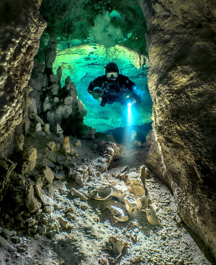 Bones and fossils of humans and extinct animals, such as mammoths, can be found on the floor of some cenotes. (Martin Broen/Caters News)