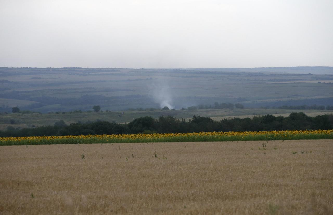 Smoke rises from the site of a Malaysia Airlines Boeing 777 plane crash near the settlement of Grabovo in the Donetsk region, July 17, 2014. The Malaysian airliner Flight MH-17 was brought down over eastern Ukraine on Thursday, killing all 295 people aboard and sharply raising stakes in a conflict between Kiev and pro-Moscow rebels in which Russia and the West back opposing sides. REUTERS/Maxim Zmeyev (UKRAINE - Tags: TRANSPORT DISASTER CIVIL UNREST)