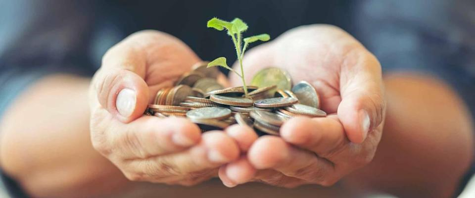 Man in black shirt holding coins with small tree, growing on money