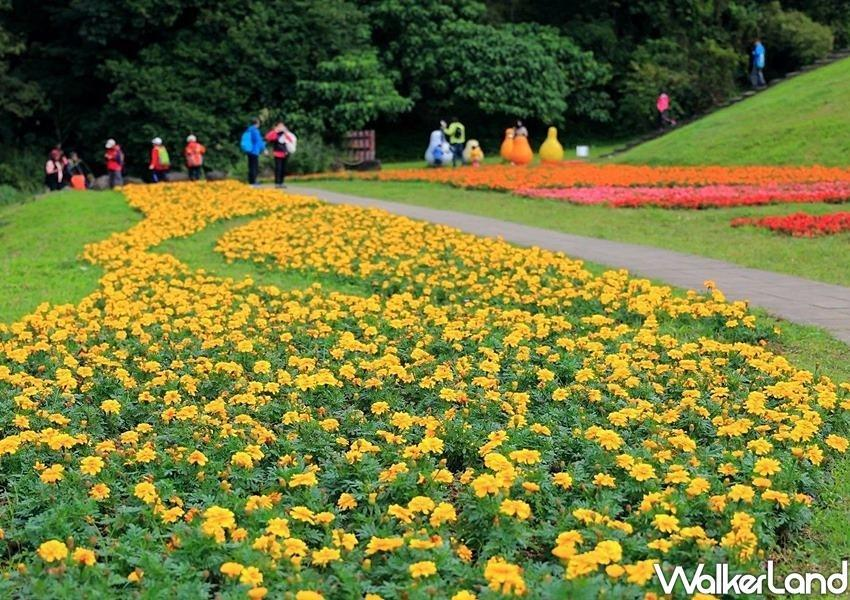 """<p>Located just 10 minutes away from the MRT Dahu Park Station, the """"Dagouxi Waterfront Park"""" is a small, secret spot for local Neihu people to take a leisure walk. (Photo courtesy of Taipei Walker)</p>"""