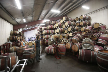 Andrew Brooks (C), associate winemaker of Bouchaine Vineyards, surveys fallen wine barrels after a 6.0 earthquake in Napa, California August 24, 2014. REUTERS/Stephen Lam