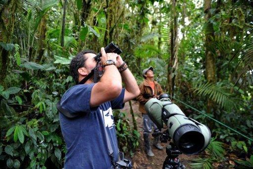 "Roberto Cedeno, birdwatcher and guide, watches birds at the Peace of the Birds private reserve in Ecuador. ""There are in Ecuador nearly 1,600 bird species representing 13% of the world's bird species,"" Cedeno, who has spent 20 years observing birds, told AFP"