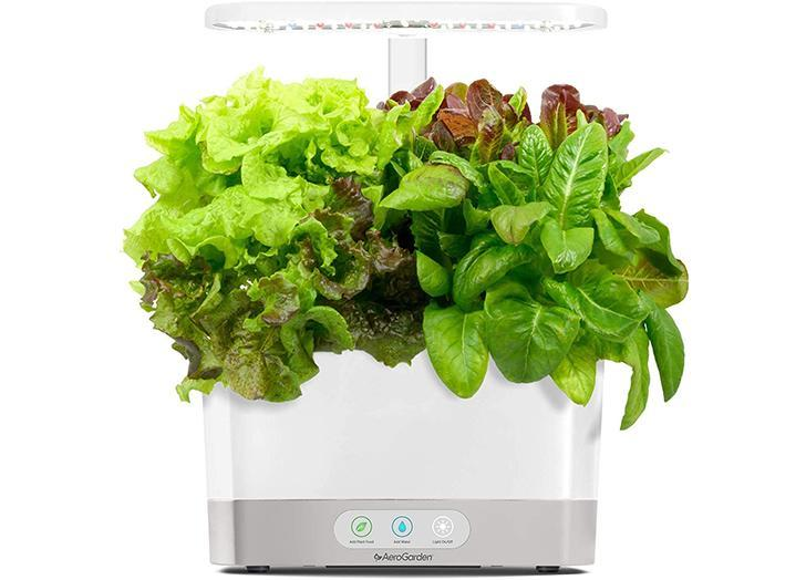 This Hydroponic Garden Is The Key To Successfully Growing Plants Indoors It S Currently On Sale