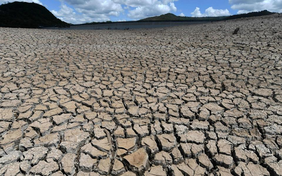 Honduras has declared a state of emergency because of a severe drought affecting the country's biggest cities - AFP