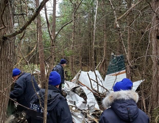 TSB investigators comb the crash scene in a wooded area in Kingston, Ont., in late November 2019. (TSBCanada/Twitter - image credit)
