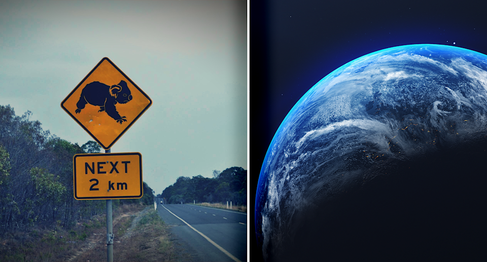 Left - a koala crossing road sign. Right - an image of the Earth.