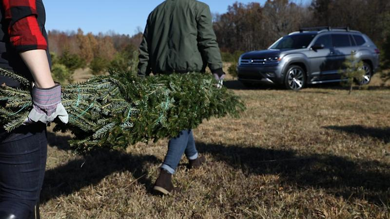 To help families secure their tree, Volkswagen compiled a list of tips and tricks.