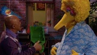 Big Bird Thought the Debate Was a Big Snooze