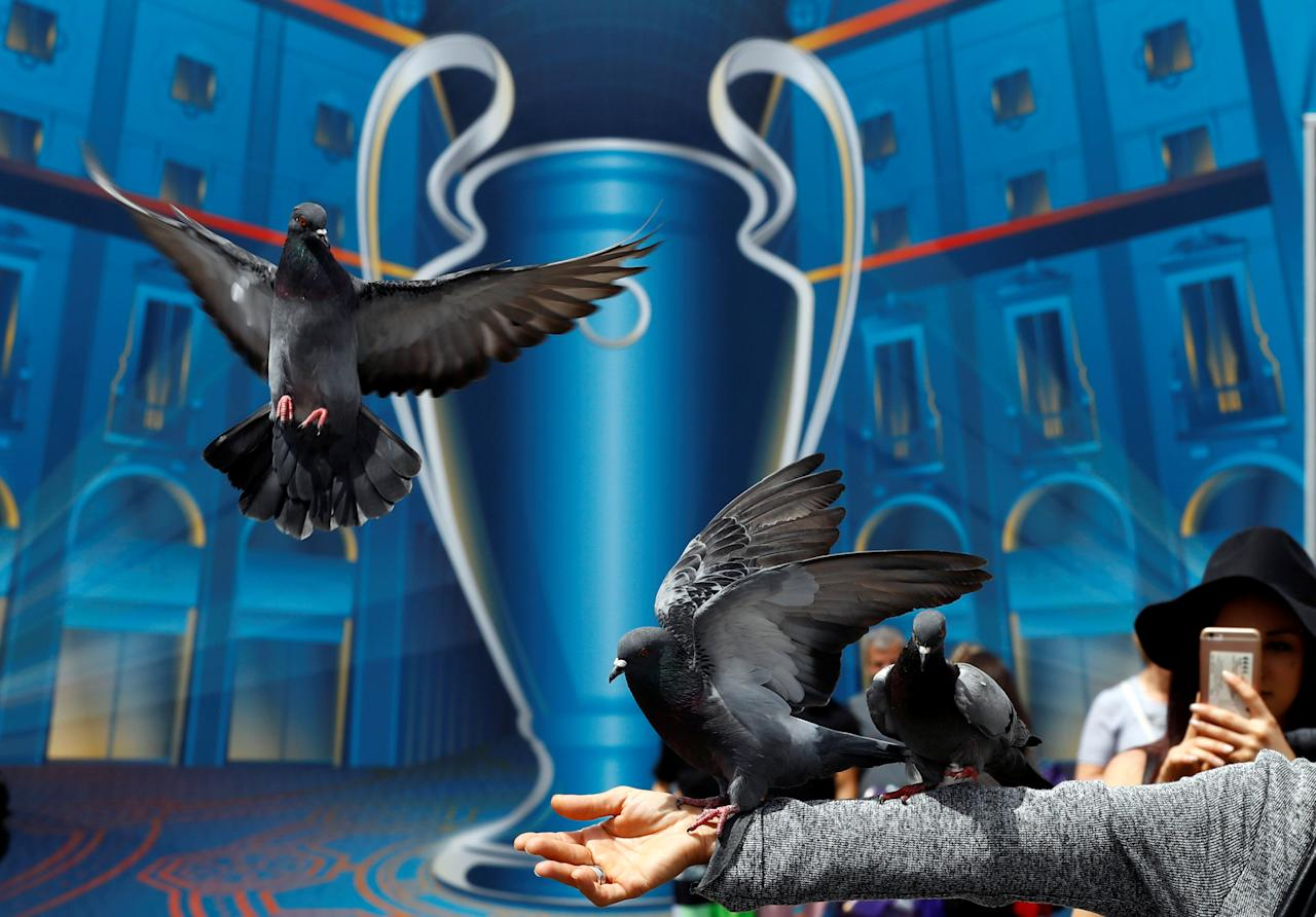 Pigeons fly in front of the UEFA Champions League poster at the Duomo square in Milan, Italy, May 26, 2016. REUTERS/Pawel Kopczynski