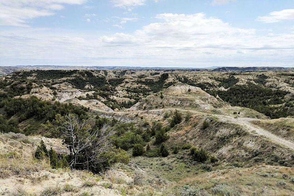 "<p>At an impressive 120 miles long, the <a href=""https://www.tripadvisor.com/Attraction_Review-g60973-d325192-Reviews-Maah_Daah_Hey_Trail-Medora_North_Dakota.html"" rel=""nofollow noopener"" target=""_blank"" data-ylk=""slk:Maah Daah Hey Trail"" class=""link rapid-noclick-resp"">Maah Daah Hey Trail</a> will take you right through the Dakota Prairie Grasslands. We can pretty much guarantee that you'll see wildlife during your trek, including antelope, bighorn sheep, and prairie dogs.</p><p><br><a class=""link rapid-noclick-resp"" href=""https://go.redirectingat.com?id=74968X1596630&url=https%3A%2F%2Fwww.tripadvisor.com%2FAttraction_Review-g60973-d325192-Reviews-Maah_Daah_Hey_Trail-Medora_North_Dakota.html&sref=https%3A%2F%2Fwww.redbookmag.com%2Flife%2Fg34357299%2Fbest-hikes-in-the-us%2F"" rel=""nofollow noopener"" target=""_blank"" data-ylk=""slk:PLAN YOUR HIKE"">PLAN YOUR HIKE</a></p>"