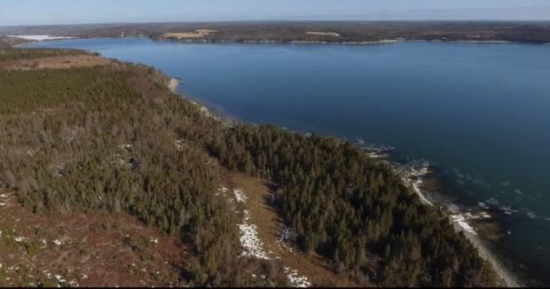 The Whale Sanctuary Project would be located here, in Port Hilford, N.S., near Sherbrooke.