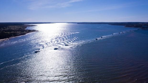 Drone image shows boats on the North Shore heading out to sea at 9 a.m. Tuesday. (Shane Hennessey/CBC - image credit)