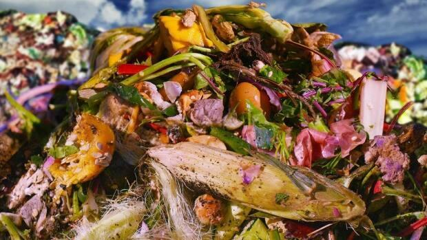 A provincial mandate is in place for many municipalities in Ontario to reduce the amount of organic waste going into landfills and divert it to facilities that will put the waste to work. (CBC - image credit)