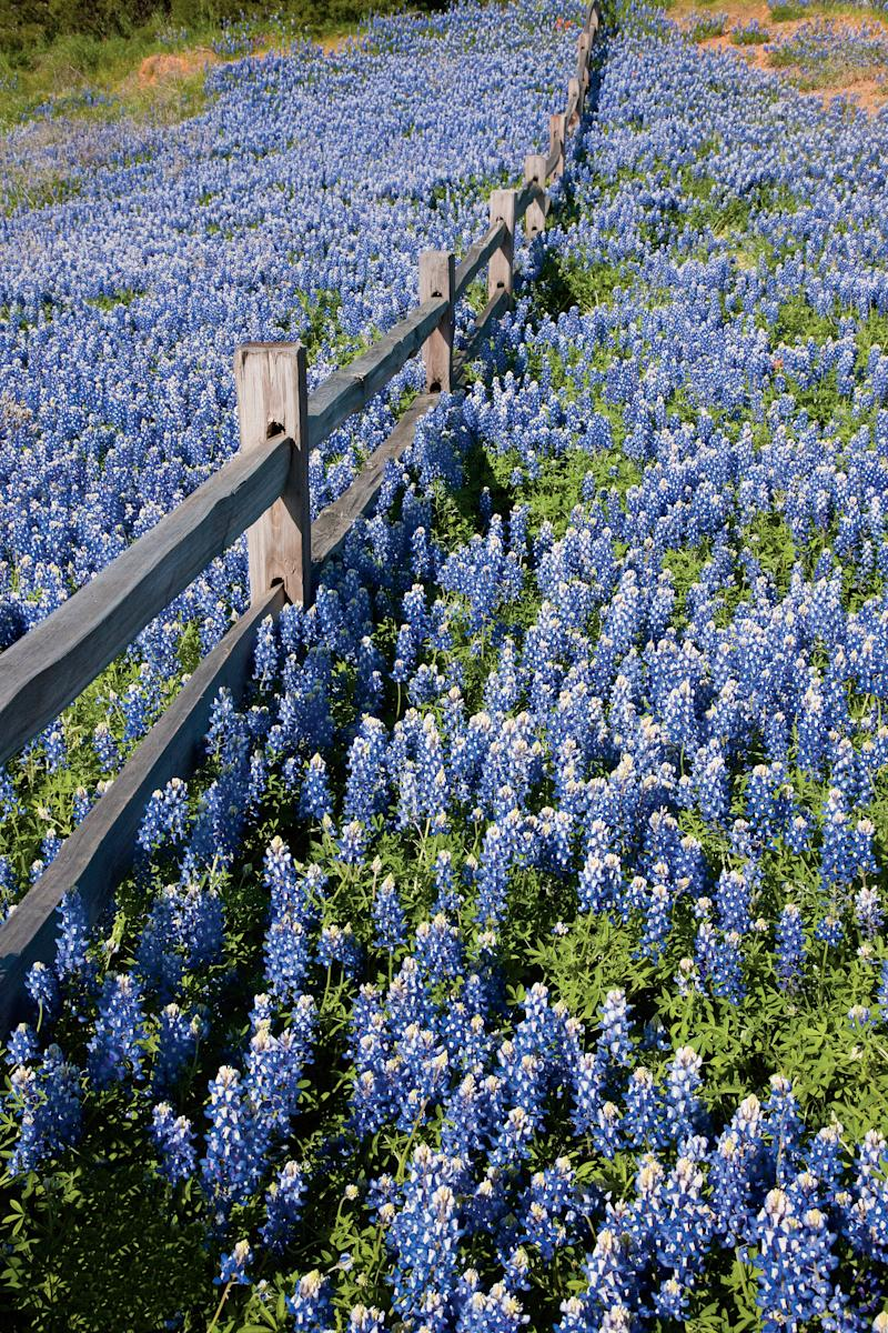 Tour the Texas Hill Country