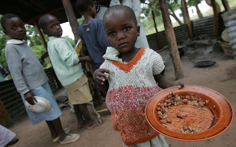 An estimated 27.4 million people out of southern Africa's combined population of 292 million, or nearly one in 10 people, will be depending on food handouts by the end of 2015 (AFP Photo/Alexander Joe)