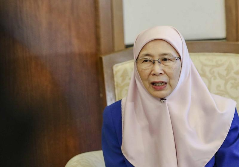 Deputy Prime Minister Datuk Seri Dr Wan Azizah Wan Ismail said the government is trying very hard to meet their target. — Picture by Firdaus Latif