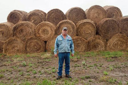Rancher Ralph Bieber stands with hay he cut from land that had been set aside for environmental conservation under a special exception due to a summer-long drought near Beulah, North Dakota, U.S. August 15, 2017.  REUTERS/Andrew Cullen