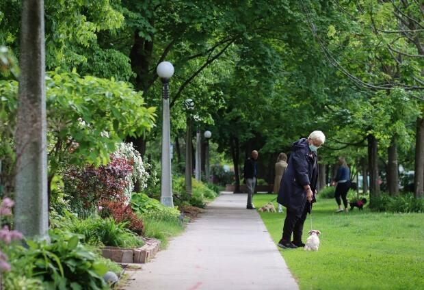 A dogwalker wears a mask while walking through Macdonald Gardens Park in Ottawa on May 28, 2021. (Trevor Pritchard/CBC - image credit)