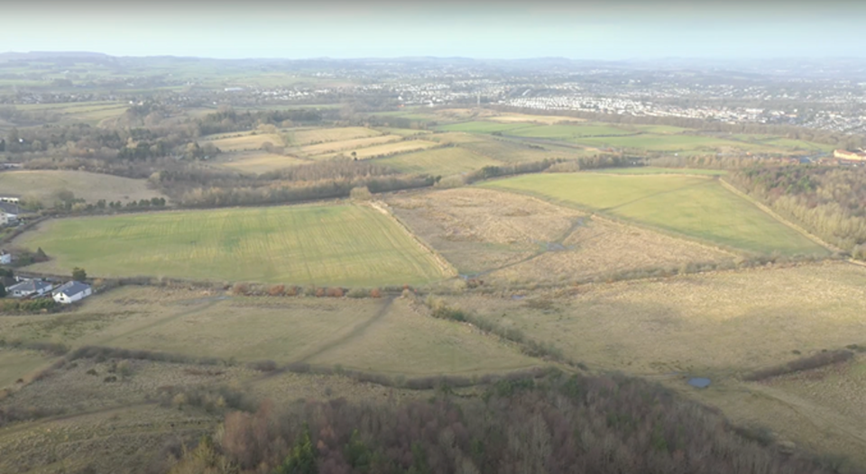 Over 17,000 oak trees will be planted at the site near Glasgow (Trees for Cities )