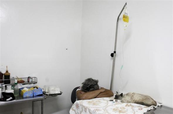 A woman rests next to her cat as it receives a saline drip inside the Anclivepa-SP veterinarian hospital in Sao Paulo August 22, 2012.