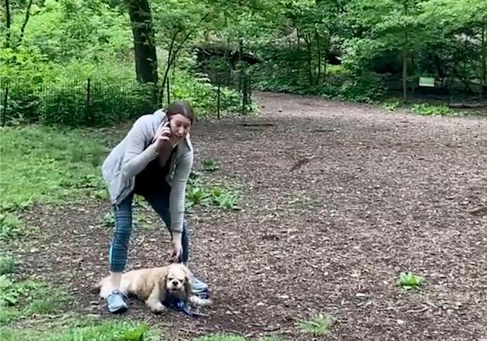 <p>FILE - This May 25, 2020, file image, taken from video provided by Christian Cooper, shows Amy Cooper with her dog calling police at Central Park in New York. Amy Cooper, the white woman who called 911 on Black birdwatcher Christian Cooper in the park, is suing her former employer for firing her over the incident. </p> ((Christian Cooper via AP, File))