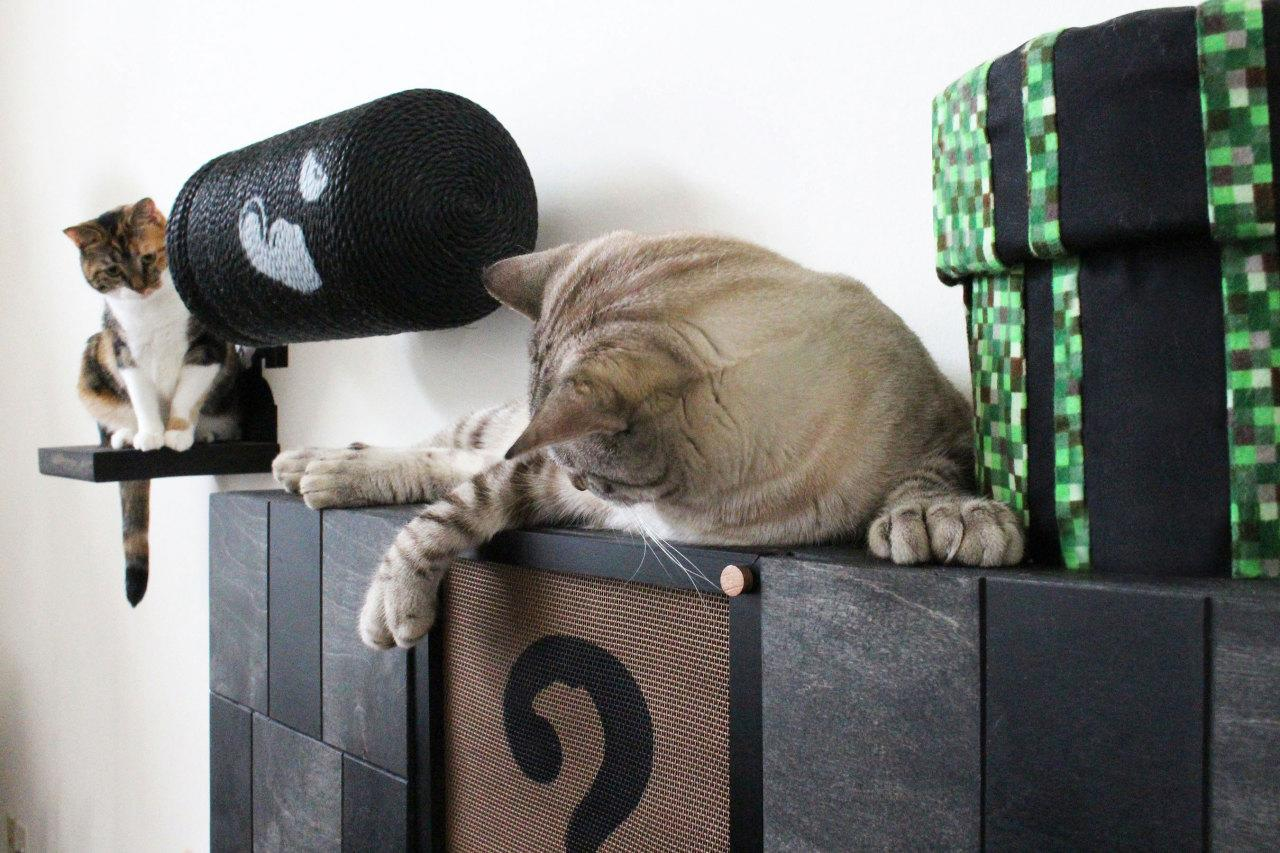 Now Your Cat Can Play Mario