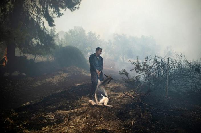 Greece has been hit by a spate of wildfires since the weekend, fanned by gale-force winds and temperatures of 40 degrees Celsius (AFP Photo/ANGELOS TZORTZINIS)