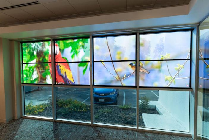 Some offices may consider using View's smart windows technology, which not only can control the amount of natural lighting, but also detect air quality and sound.