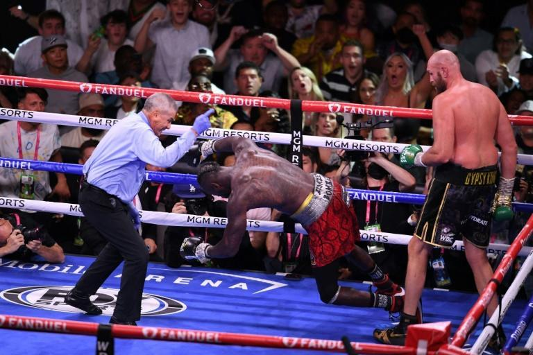 Man down: WBC heavyweight champion Tyson Fury watches as Deontay Wilder falls to the canvas (AFP/Robyn Beck)