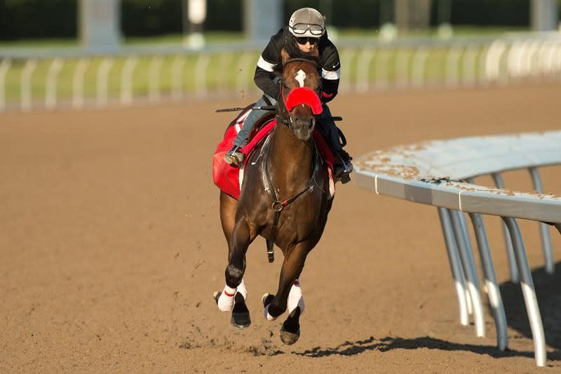 Clayton looking to secure trainer Kevin Attard his first Queen's Plate win