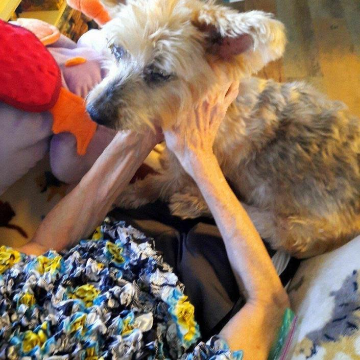 Diane Brisson holds her 12-year-old Yorkie, Champagne, at home in Pinellas Park, Fla., on Dec. 17, 2020, the day Brisson had her beloved pet put down at home using a private service, Lap of Love. The service provides veterinarians for home pet euthanasia. (Marsha Thompson via AP)
