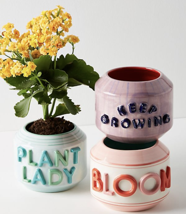 How does your garden grow? (Photo: Anthropologie)